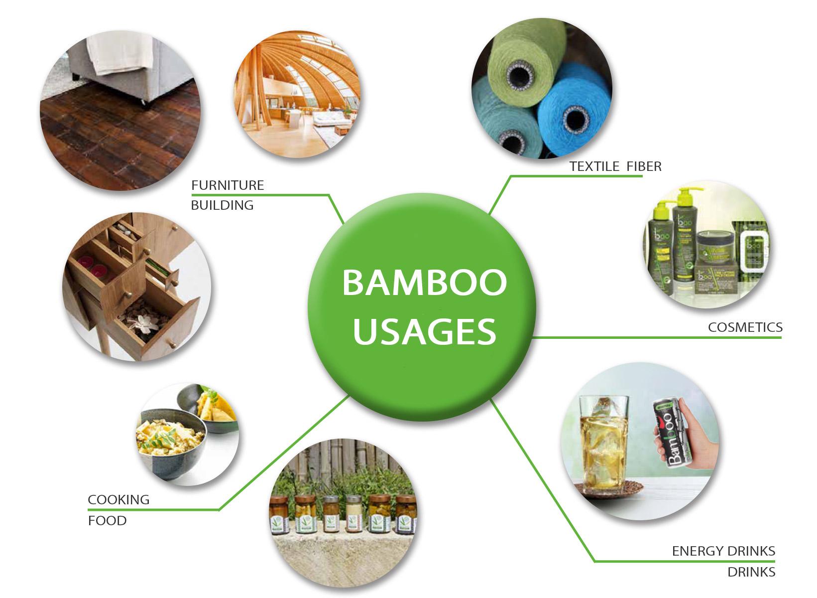 Usi e utilizzi del Bambù